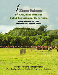 1st Annual Beefmaster Bull & Replacement Heifer Sale